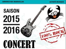 Samedi 28 novembre : concert