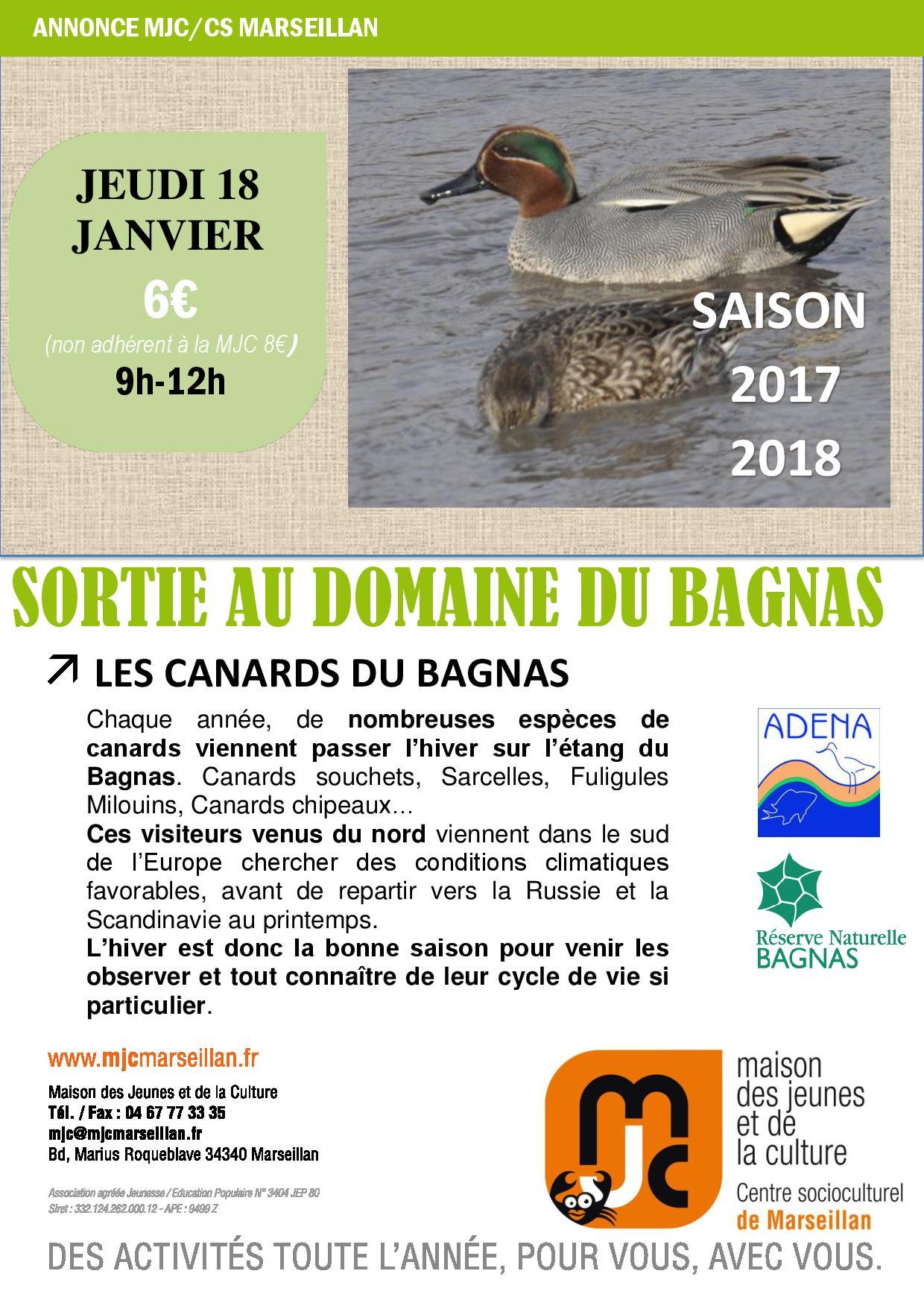 Jeudi 18 janvier 2018 : sortie au domaine du Bagnas